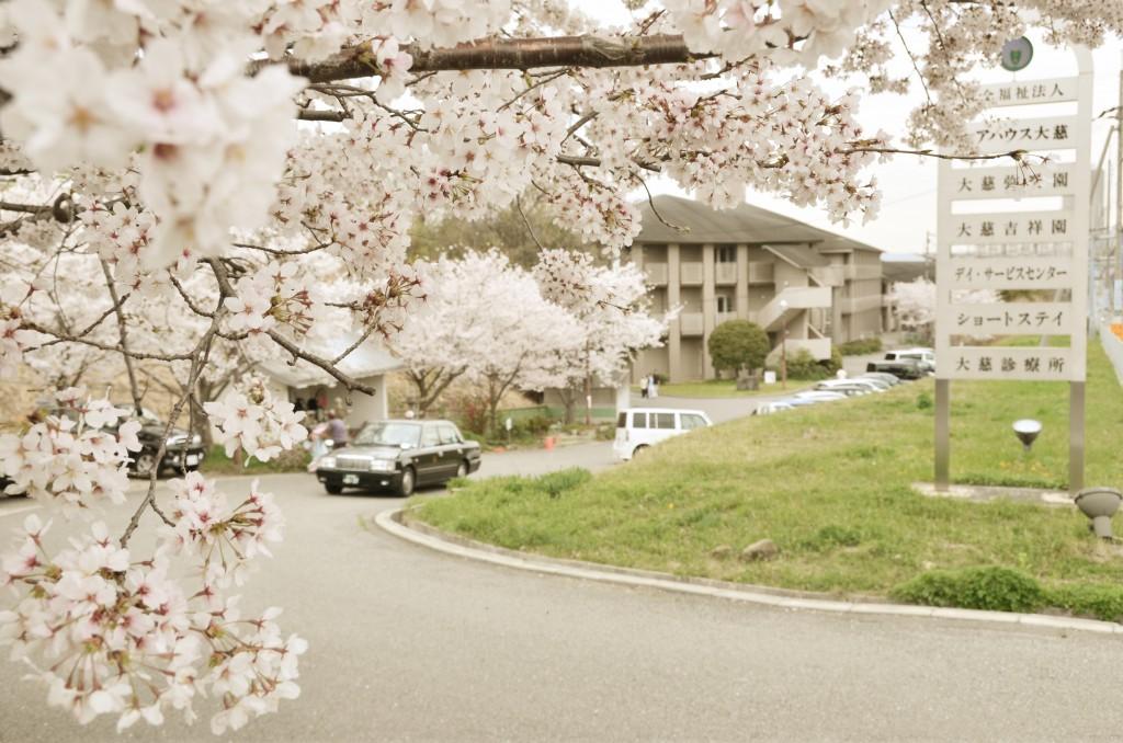 神戸市 西区 老人 介護 施設 特養